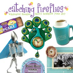 catching fireflies creatove gifts