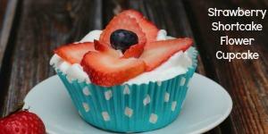 smallstrawberryshortcake