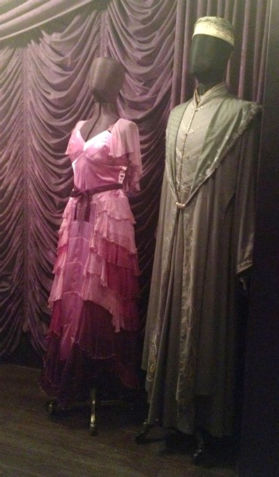 Hermione's Yule Ball gown