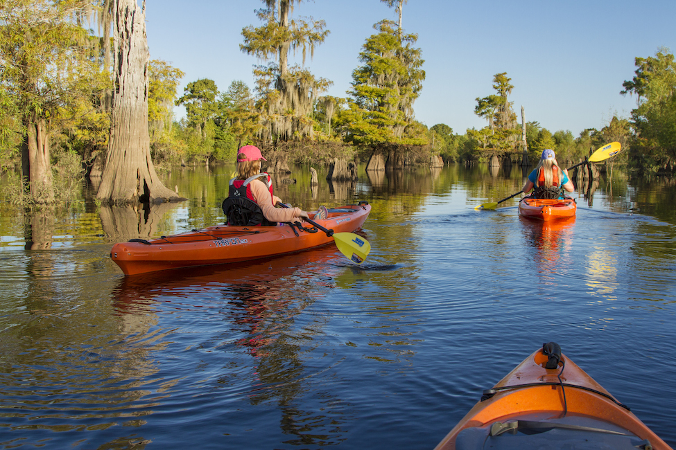 kayak adventures in florida gulf county