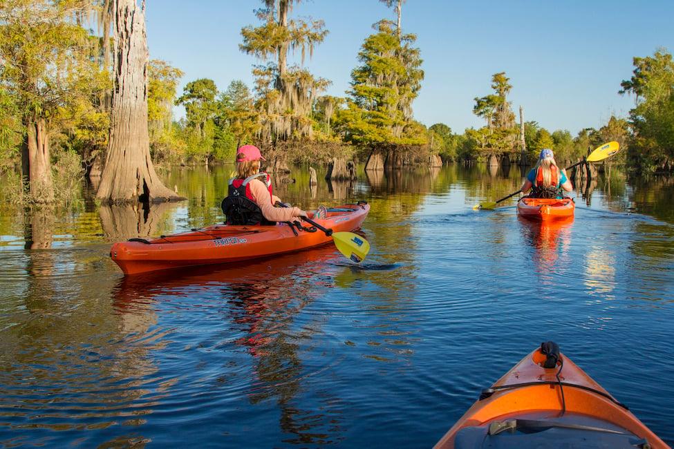 kayak adventures in florida gulf county
