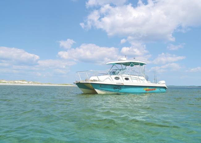 ecotour boat gulf county florida