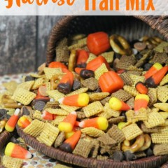 harvest fall trail mix