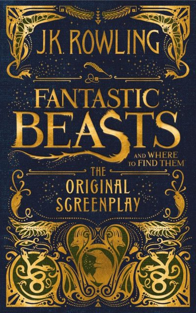 fantastic-beasts-gift-idea-for-tween-girls