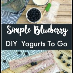diy blueberry gogurt
