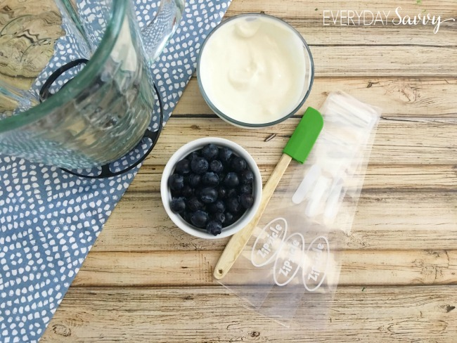 squeeze yogurt recipe ingredients - perfect for school lunches and more healthy!